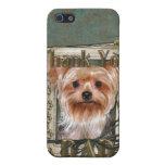 Gracias - las patas de piedra - Yorkshire Terrier  iPhone 5 Protectores