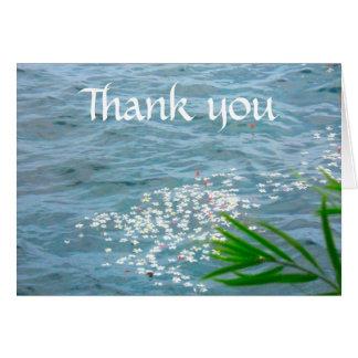 Gracias los Plumerias en el océano