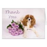 Gracias los rosas arrogantes del perro de aguas de felicitación