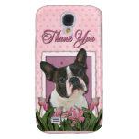 Gracias - los tulipanes rosados - Boston Terrier