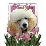 Gracias - los tulipanes rosados - caniche - albari escultura fotográfica