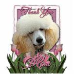 Gracias - los tulipanes rosados - caniche - albari esculturas fotograficas