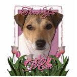 Gracias - los tulipanes rosados - Jack Russell Escultura Fotografica