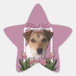Gracias - los tulipanes rosados - Jack Russell Pegatina En Forma De Estrella