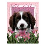 Gracias - los tulipanes rosados - perro de aguas d tarjeta postal