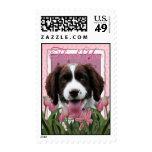 Gracias - los tulipanes rosados - perro de aguas envio