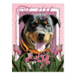 Gracias - los tulipanes rosados - Rottweiler - Postal