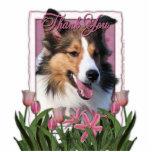 Gracias - los tulipanes rosados - Sheltie Esculturas Fotograficas
