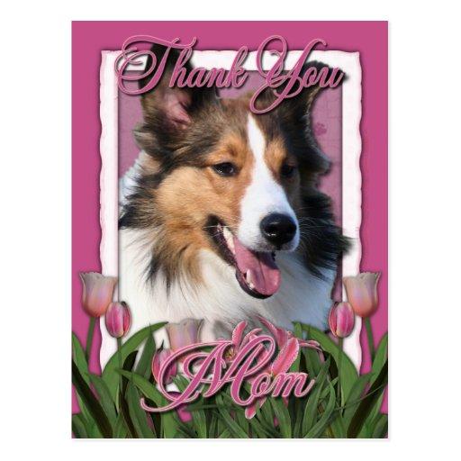 Gracias - los tulipanes rosados - Sheltie Tarjeta Postal