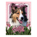 Gracias - los tulipanes rosados - Sheltie Tarjetas Postales