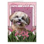Gracias - los tulipanes rosados - ShihPoo - Maggie