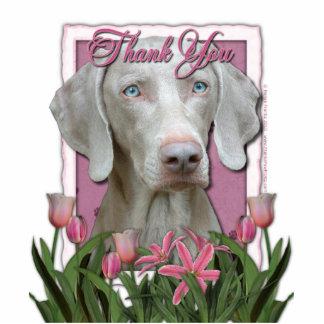 Gracias - los tulipanes rosados - Weimeraner - Fotoescultura Vertical