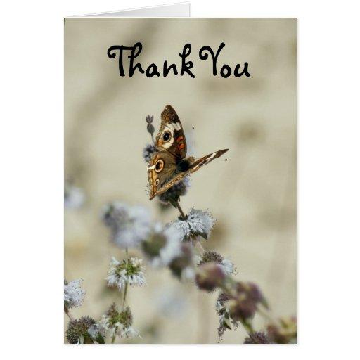 Gracias, mariposa felicitacion
