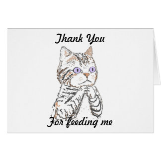 Gracias - mirando después de gato felicitación
