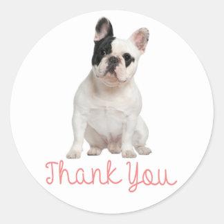 Gracias pegatina del perro de perrito del dogo