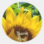 ¡Gracias! pegatinas florales de los girasoles de Pegatinas Redondas