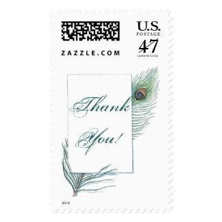 Gracias pluma inspirada del pavo real sellos postales