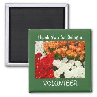 Gracias por ser un tulipán de los regalos del imán