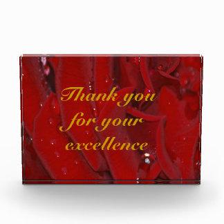 Gracias por su excelencia