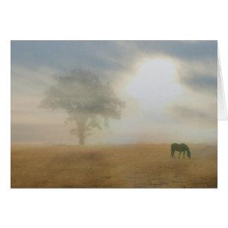 Gracias por su tarjeta del caballo y del sol de la