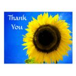 Gracias postal amarilla del saludo del girasol