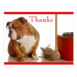 Gracias postal inglesa del saludo del perrito del