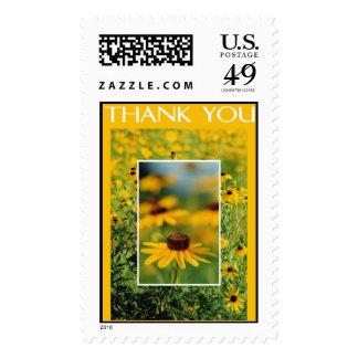Gracias - sello Negro-Observado de Susans