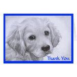 Gracias tarjeta de dibujo del perrito del golden r