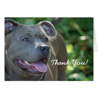 Gracias tarjeta de felicitación azul del perro del