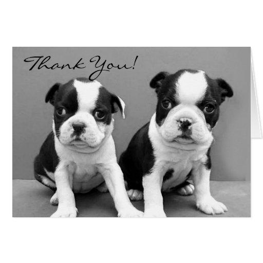 Gracias tarjeta de felicitación de los perritos de