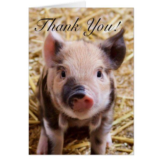 Gracias tarjeta de felicitación del cochinillo