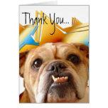 Gracias tarjeta de felicitación del dogo
