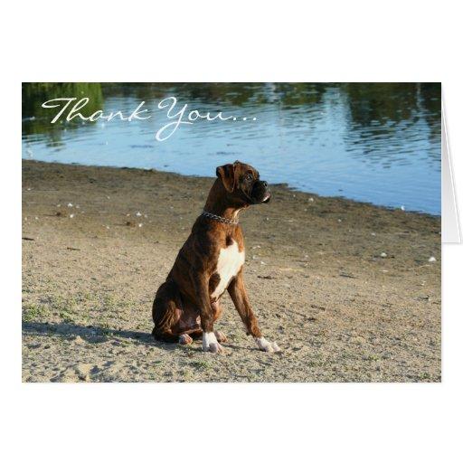 Gracias tarjeta de felicitación del perrito del bo