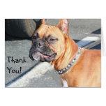Gracias tarjeta de felicitación del perro del boxe