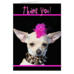 Gracias tarjeta de felicitación punky de la chihua