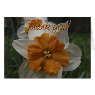 Gracias tarjeta de la flor del narciso