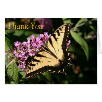 Gracias tarjeta de la mariposa