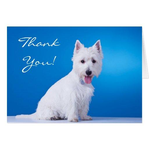 Gracias tarjeta de nota en blanco de Terrier de la