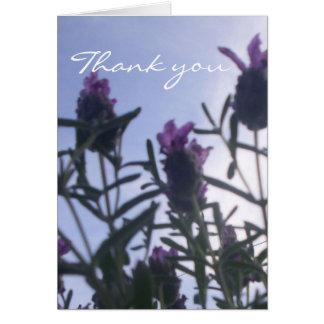 gracias tarjeta lavendar francesa