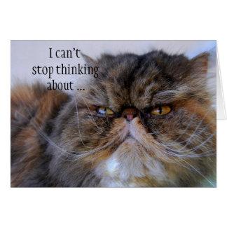 Gracias tarjeta persa del gatito del calicó
