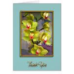 Gracias verdes de las orquídeas del Cymbidium Felicitaciones