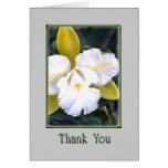 Gracias verdes y blancas de la orquídea de Cattley Tarjetón