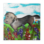 Gracie in the Field Ceramic Tile