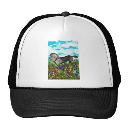 Gracie in the Field Trucker Hat
