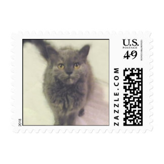Gracie Piddlewhiskers Cat Stamps
