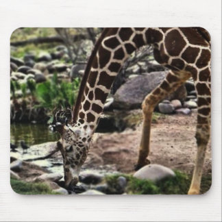 Gracious Giraffe mousepad