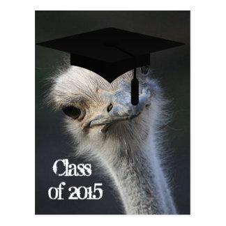 Grad Announcement Postcard
