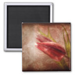 Graditude Overflowing 2 Inch Square Magnet