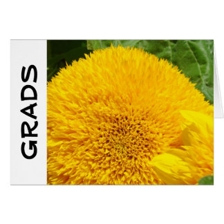 GRADS greeting cards Personalized Sunflowers