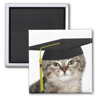Graduación del gatito imán cuadrado
